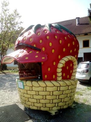 Zorneding Strawberry Frau