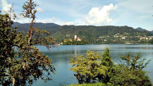 Sam and Tabitha Wedding Lake Bled