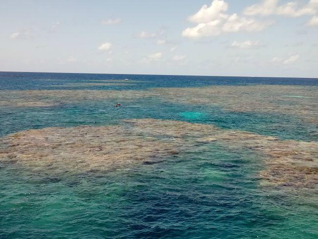 Cairns Australia Queensland Great Barrier Reef Tusa