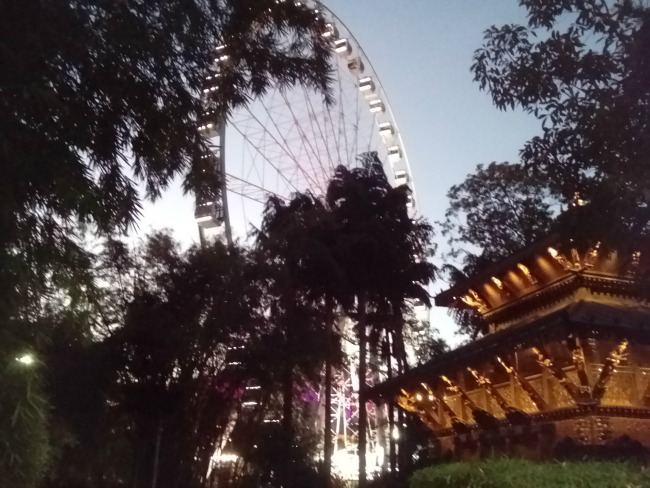 Brisbane Queensland Australia JWalking