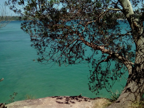 Manley Sydney New South Wales Australia JWalking