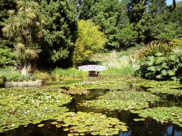 Hobart Tasmania Australia JWalking