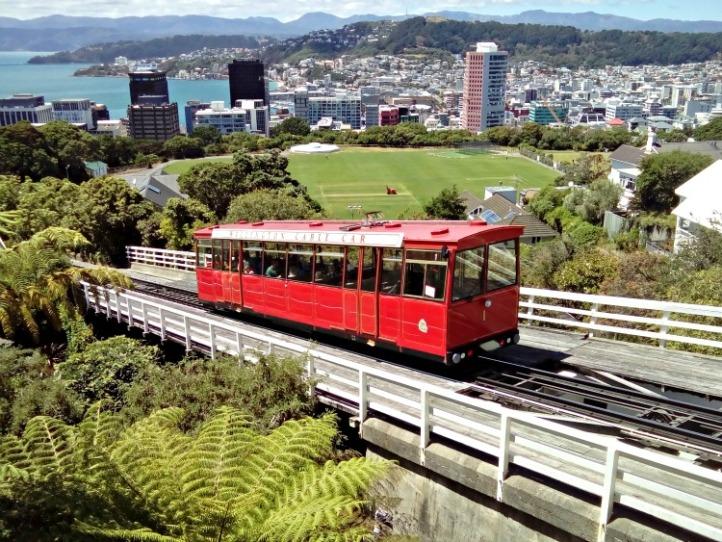 Wellington New Zealand JWalking
