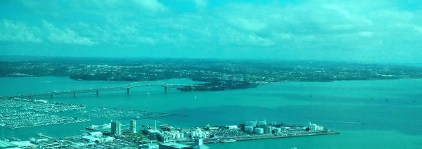 View from Sky Tower (through their blue tinted glass unfortunately)