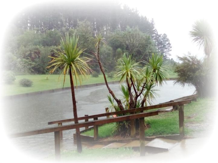 Rotorua New Zealand JWalking