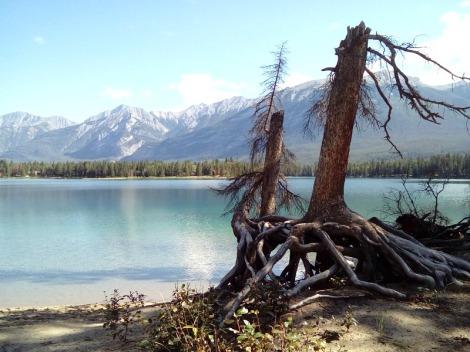 Jasper Lake Edith