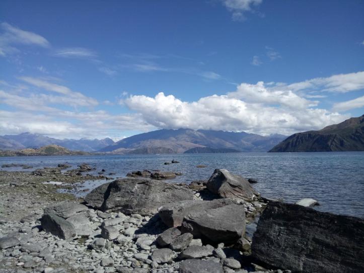 EEly Point Reserve Lake Wanaka
