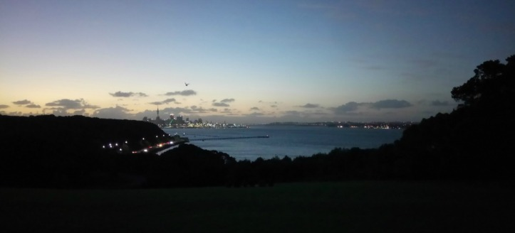 Auckland Harbour lights