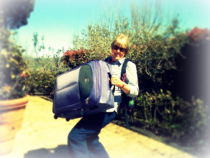 JWalking Suitcase