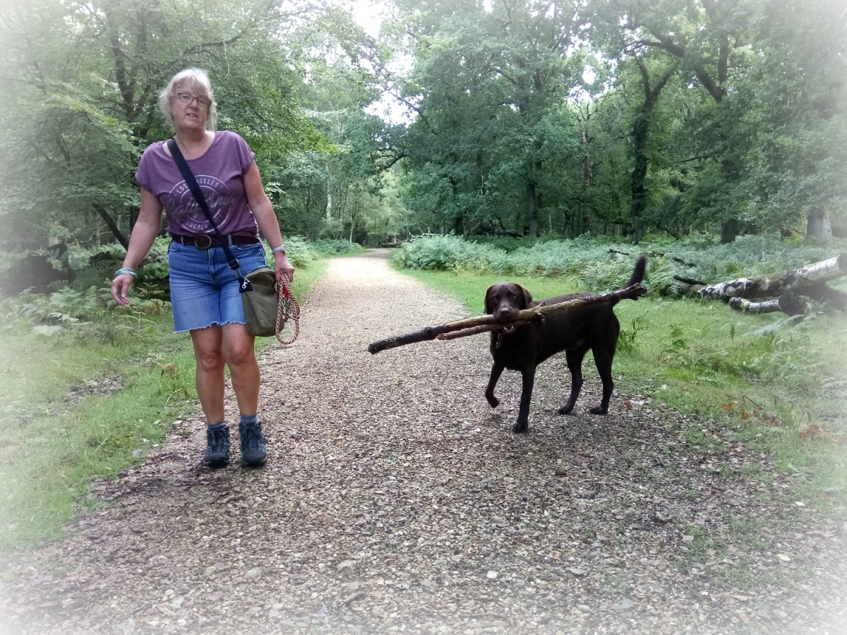 Our triumphant return to housesitting in the New Forest