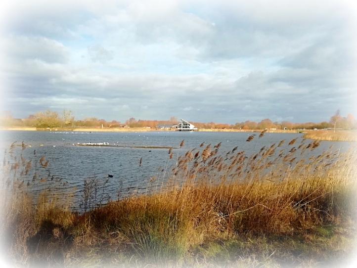 Stanwick lakes Northamptonshire
