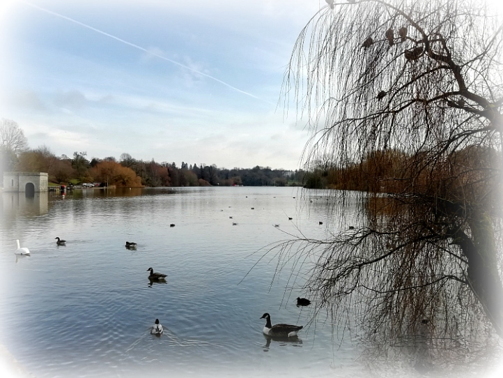 Mote Park Maidstone