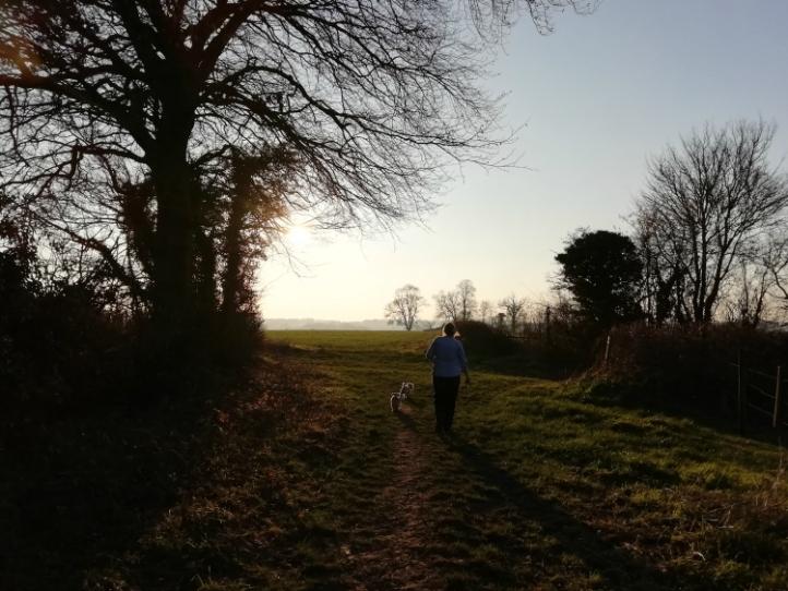 Cheriton Walk
