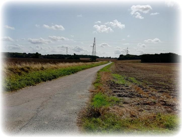Pilgrims way Kent