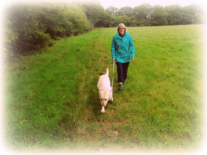 Barns Green Housesitting