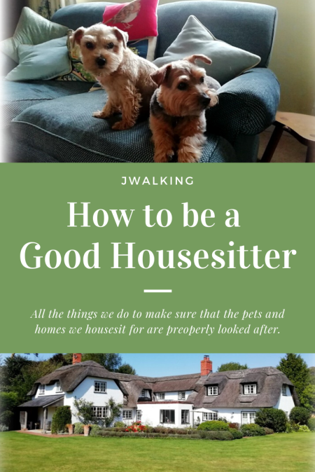 How to be a Good Housesitter