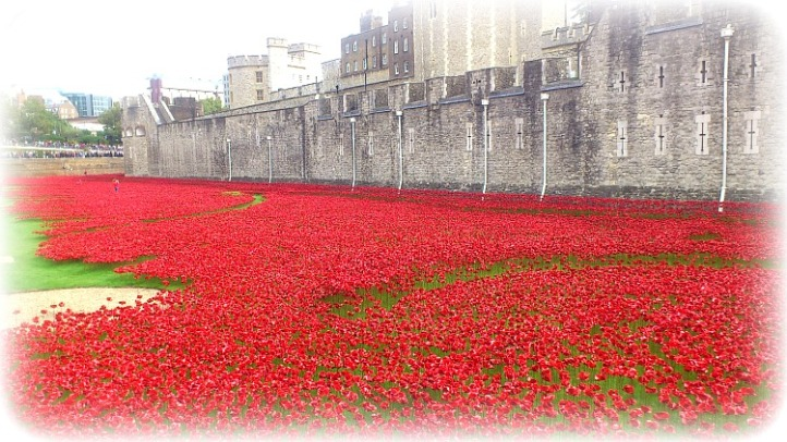 Remembrance Day Tower of London