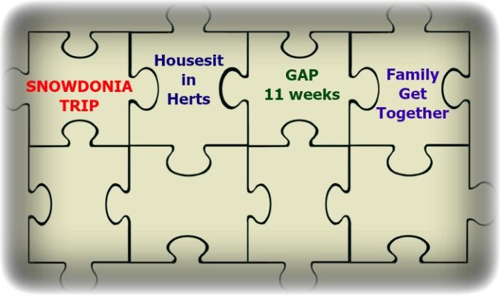 Housesitting Puzzle