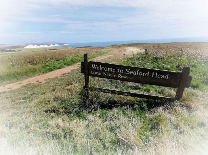 Seaford Head and Cuckmere Haven